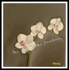Orchidée, huile